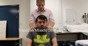 Trapezius Muscle Strength
