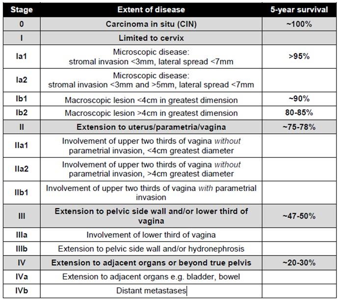 cervical cancer staging  FIGO   Vaginal Cancer Stages