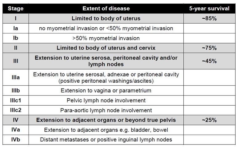 endometrial hyperplasia symptoms