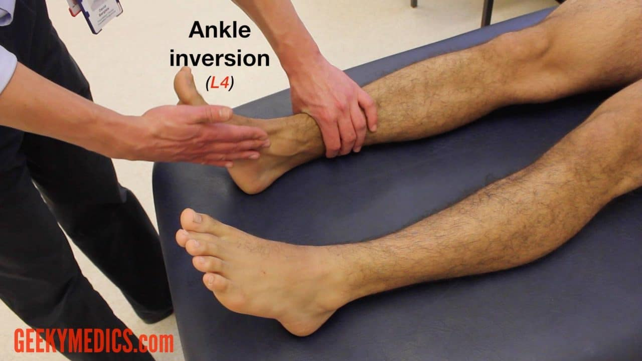 lower limb neurological examination