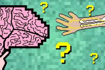 Neurology quiz post pic