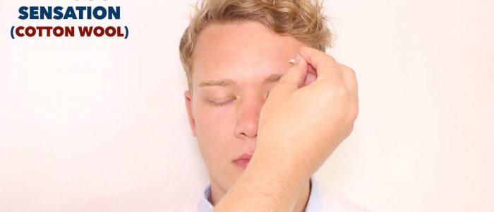 Trigeminal nerve sensation