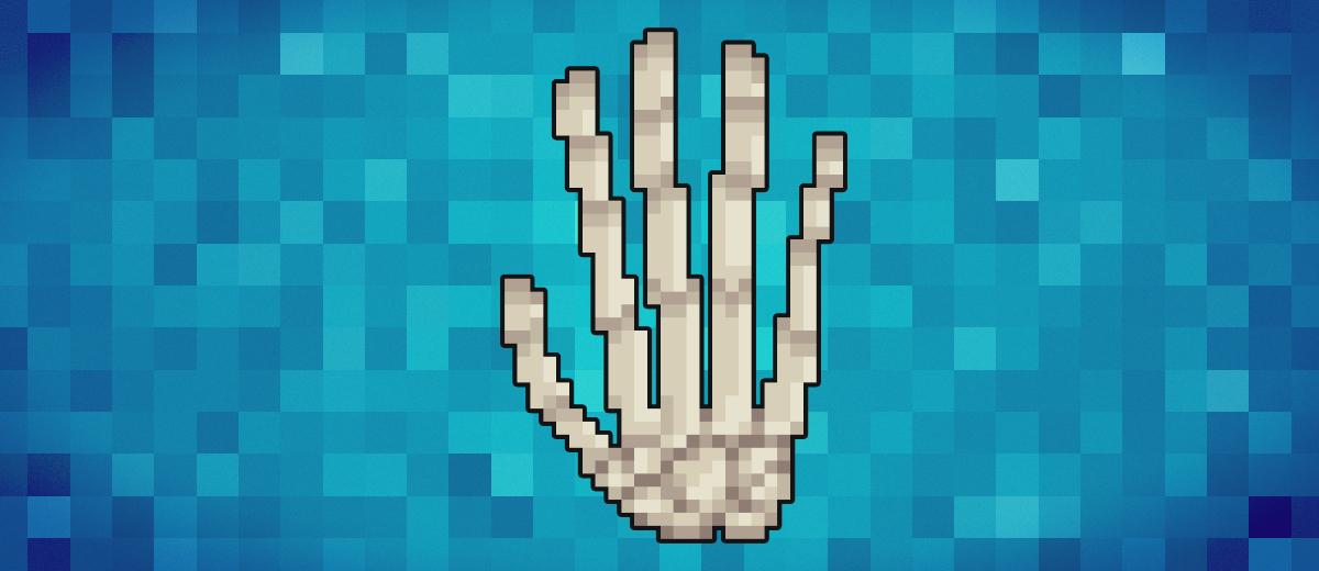 Bones of the Hand