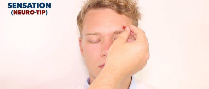 Pin prick sensation trigeminal nerve