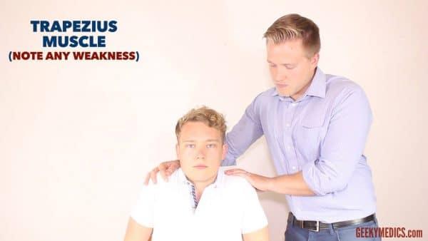 Assess Trapezius strength.