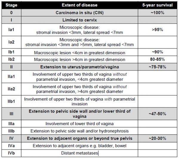 cervical cancer staging (FIGO)