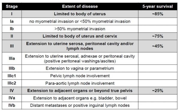 endometrial cancer staging