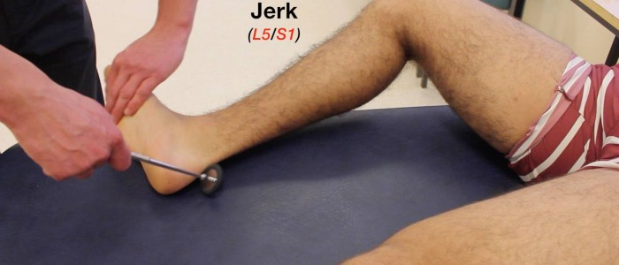 Ankle jerk reflex