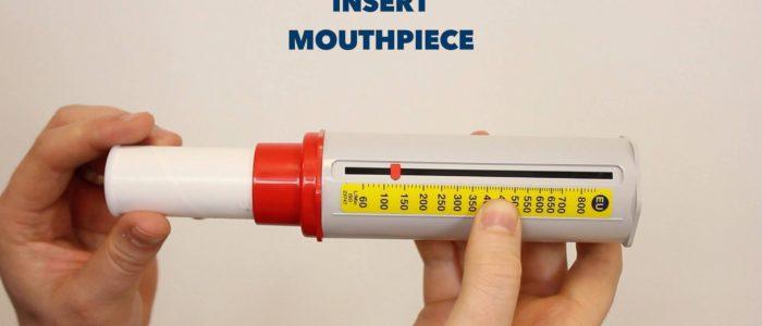 Insert peak flow mouthpiece
