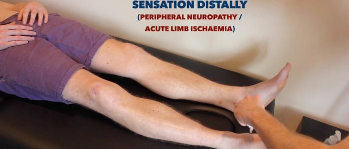 Lower limb sensation