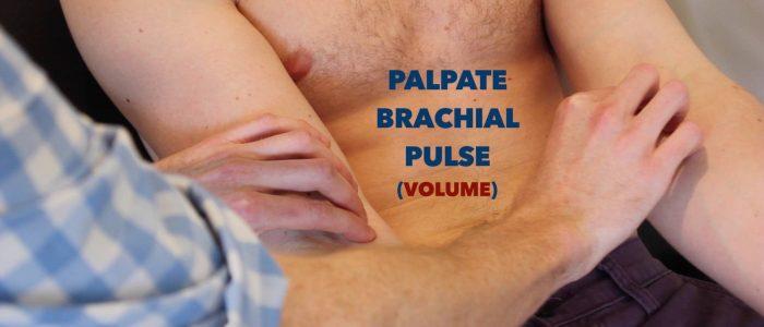 Palpate the brachial pulse