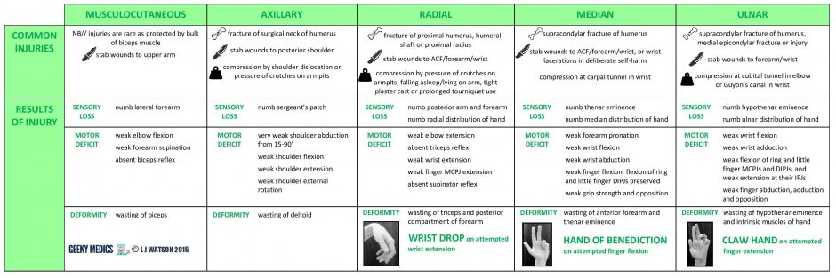 upper limb nerve injuries table