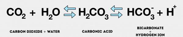 Carbonic acid equation - ABG Interpretation