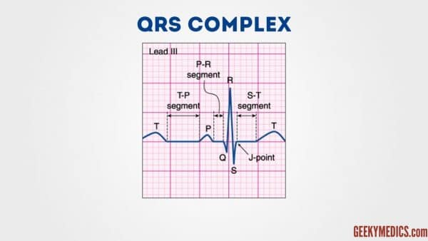 Components of the ecg