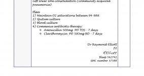 CXR interpretation documentation