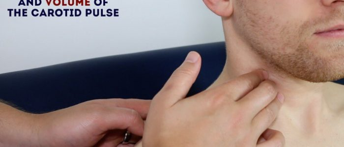 Palpate the carotid pulse