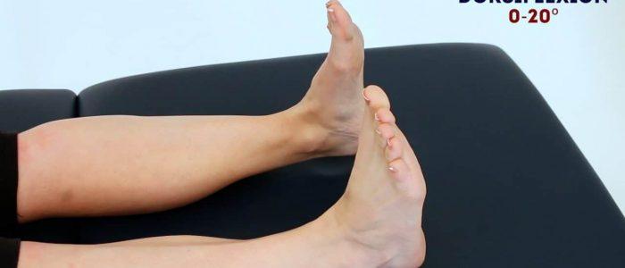 Active ankle dorsiflexion