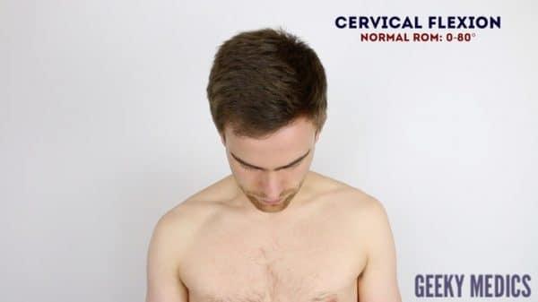 Cervical spine flexion