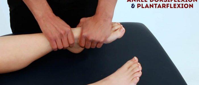 Passive ankle plantarflexion