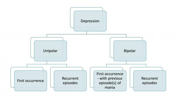 The categorisation of depression