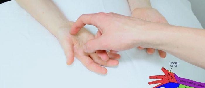 Assess median nerve sensation