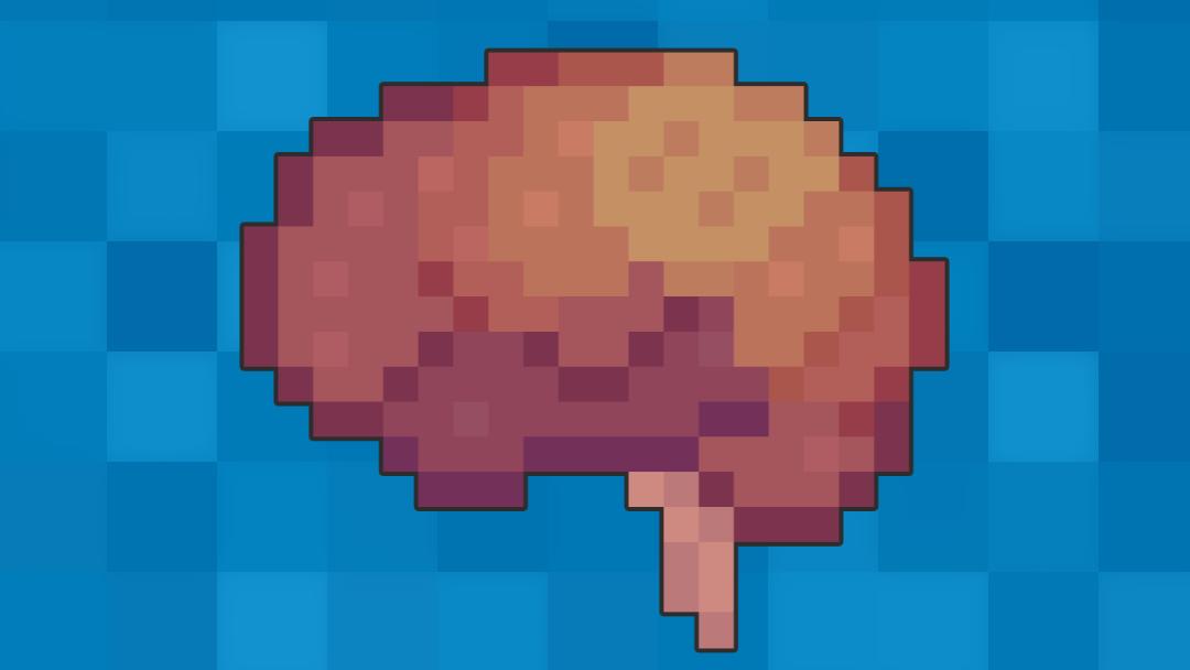 Venous Drainage of the Brain