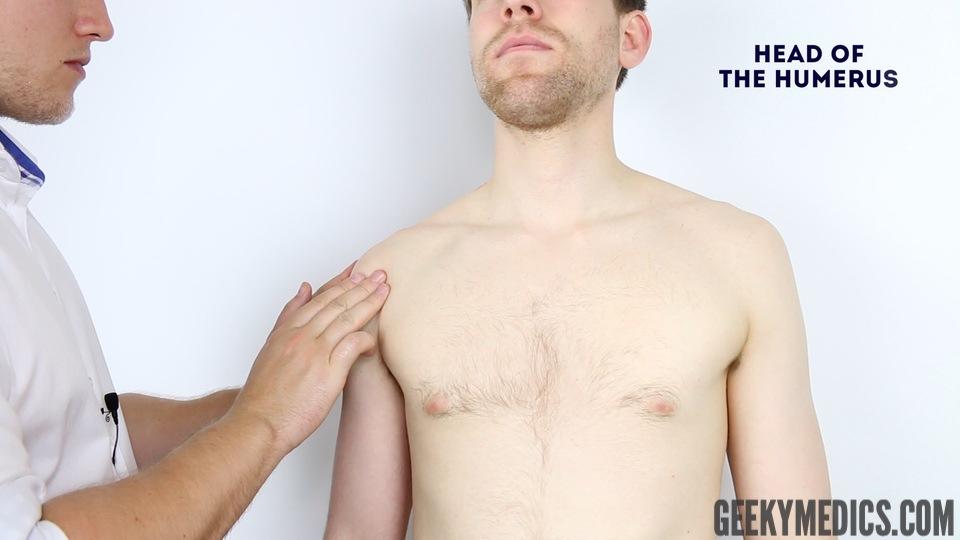 Shoulder Examination Osce Guide Geeky Medics