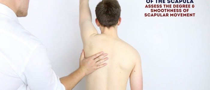 Assess the movement of the scapula