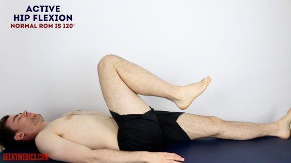 Assess active HIP FLEXION