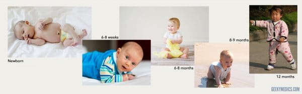 Gross Motor Developmental Milestones