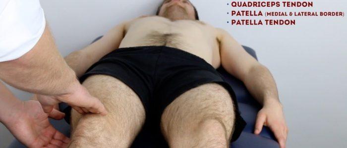 Palpate quadriceps tendon