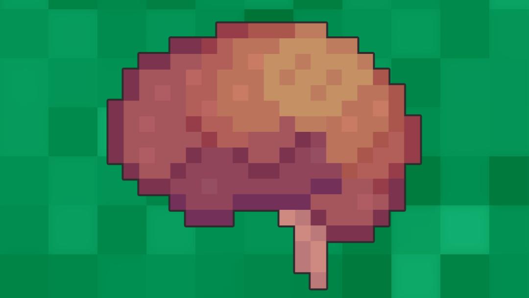 The Vestibulocochlear Nerve (CN VIII)