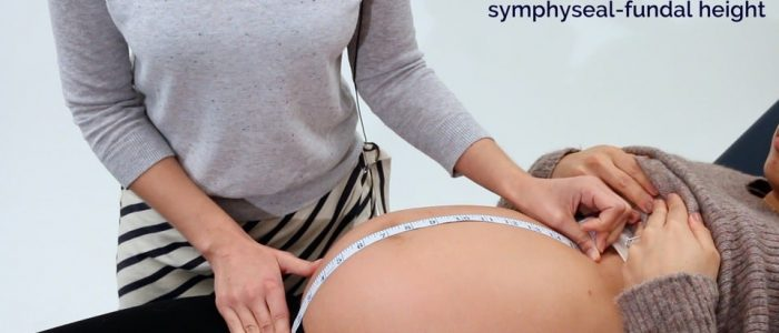 Measure from the pubic symphysis to the upper border of the uterus