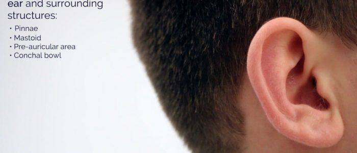 Inspect external ear