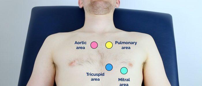 Heart valve locations
