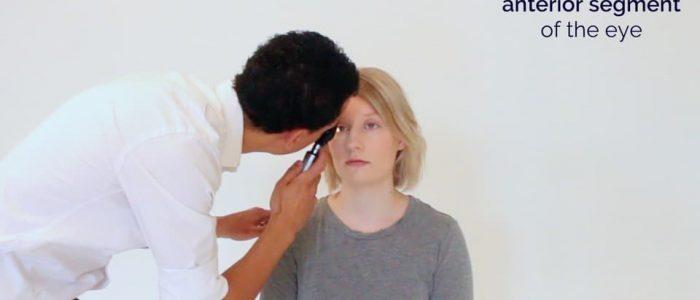 Assess the anterior segment of the eye