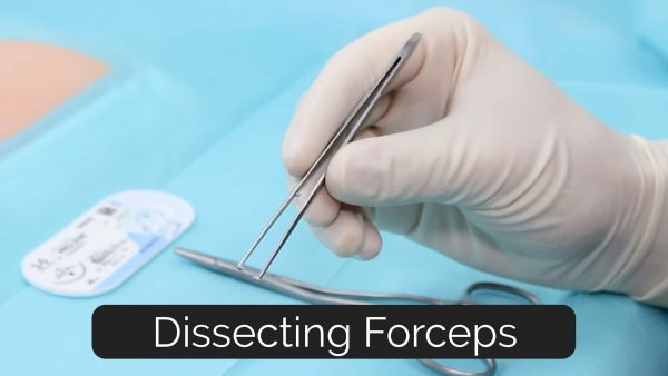 Figure 5. Dissecting Forceps (toothed)