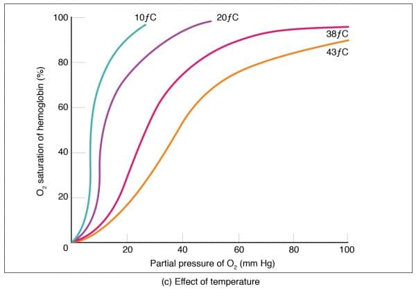 Oxygen dissociation curve temperature