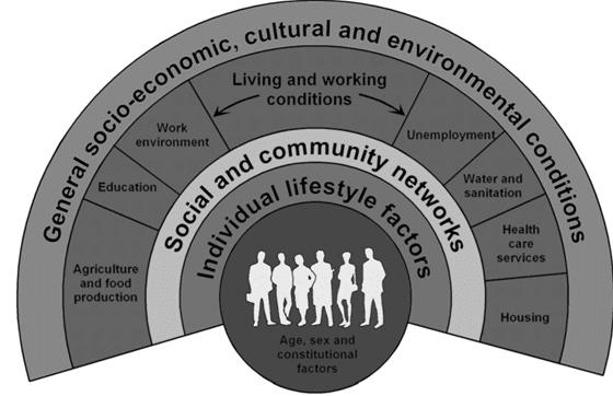 The Dahlgren and Whitehead model of the social determinants of health