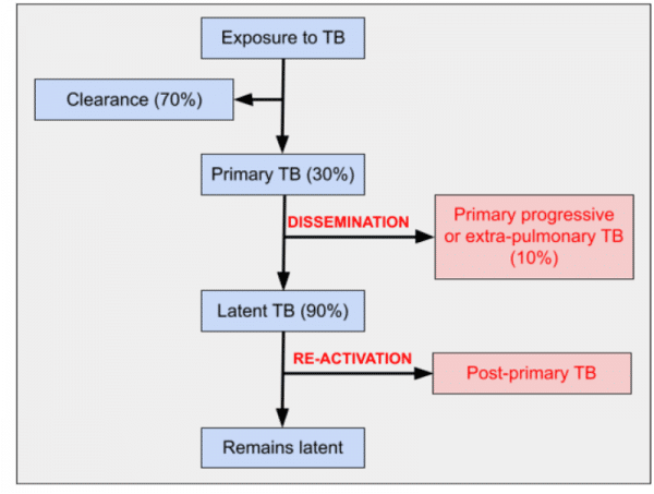 Outcomes of tuberculosis exposure